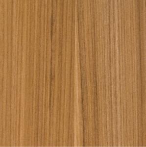 Arizona Cypress